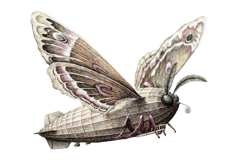 alternopolis-moth