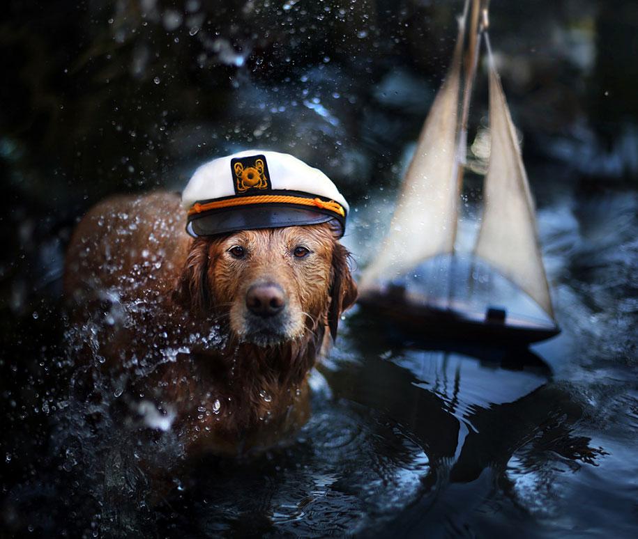 golden-retriever-chuppy-dog-photography-alternopolis-jessica-trinh-5