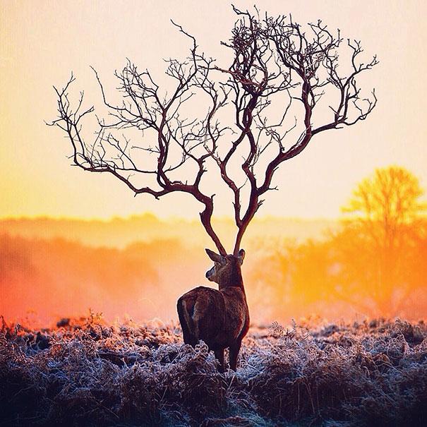 colourful-surreal-photography-robert-jahns-3