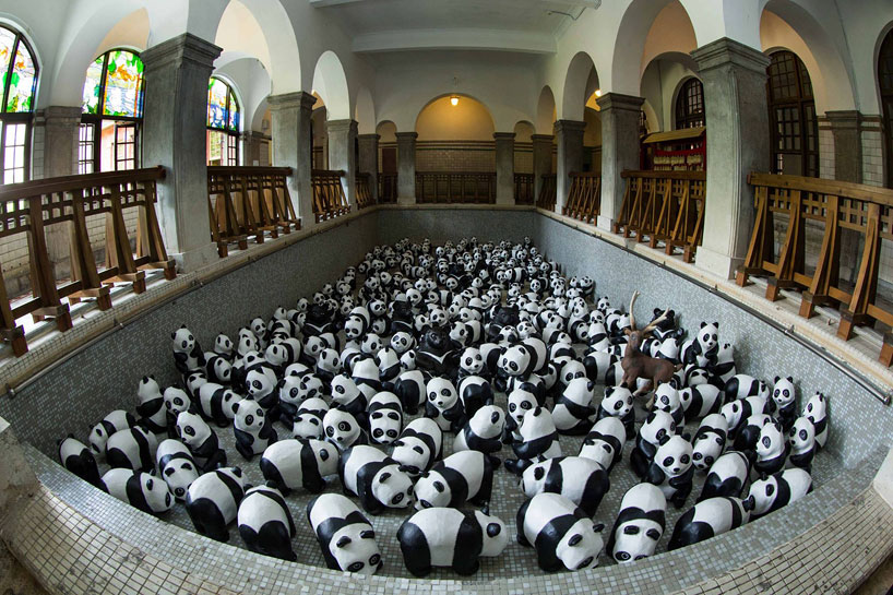 1600-pandas-in-hong-kong-alternopolis-01 (4)