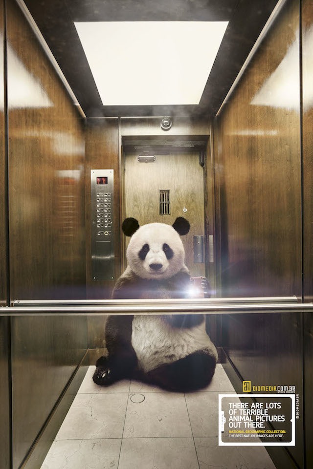 Selfie_National_Geographic-alternopolis (2)