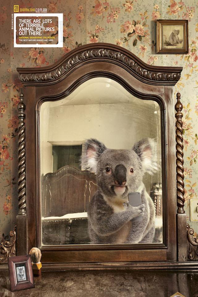 Selfie_National_Geographic-alternopolis (4)