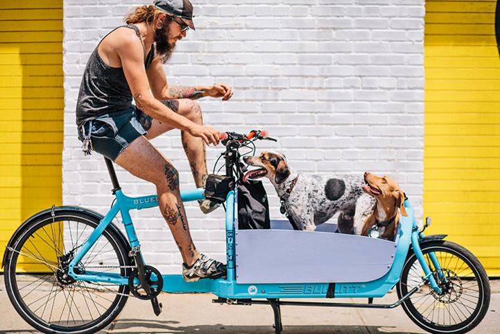 NY_Bikes_Sam Polcer  (3)