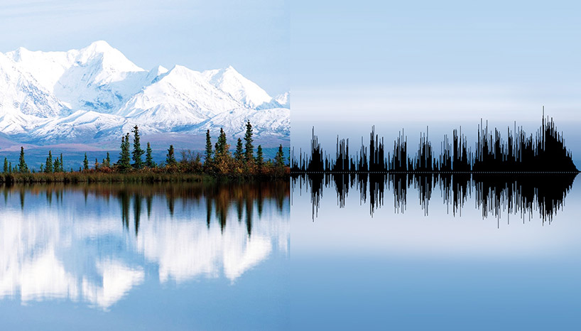 anna-marinenko-nature-sound-alternopolis (9)