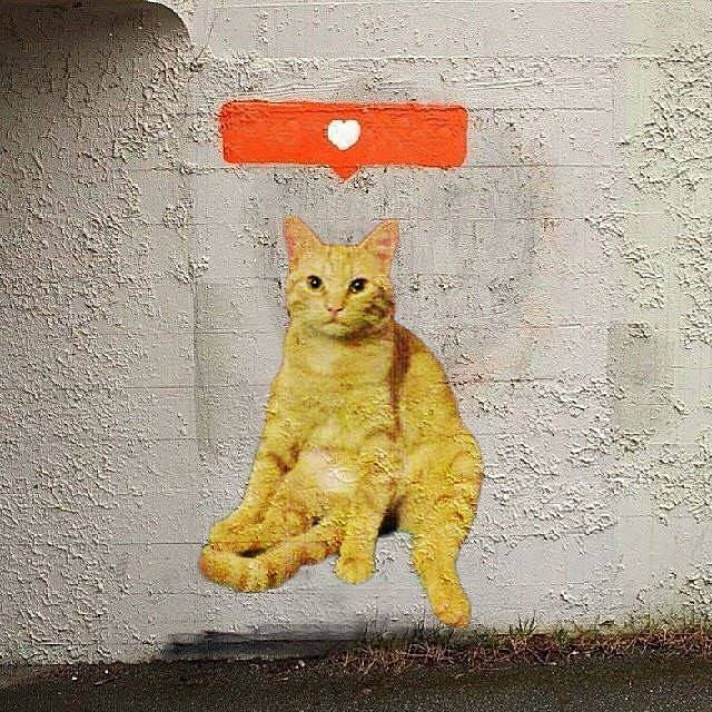 gato gordo en el arte (3)