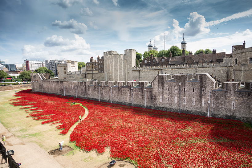 888246-ceramic-poppies-tower-of-london-remembrance