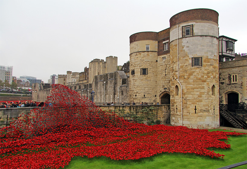 888246-ceramic-poppies-tower-of-london