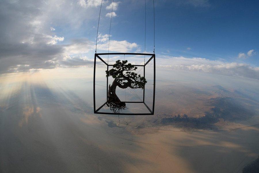 Makoto Azuma alternopolis EXOBIOTANICA-BOTANICAL-SPACE-FLIGHT (3)