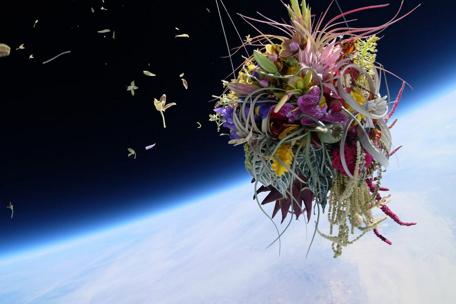 Makoto Azuma alternopolis EXOBIOTANICA-BOTANICAL-SPACE-FLIGHT (4)