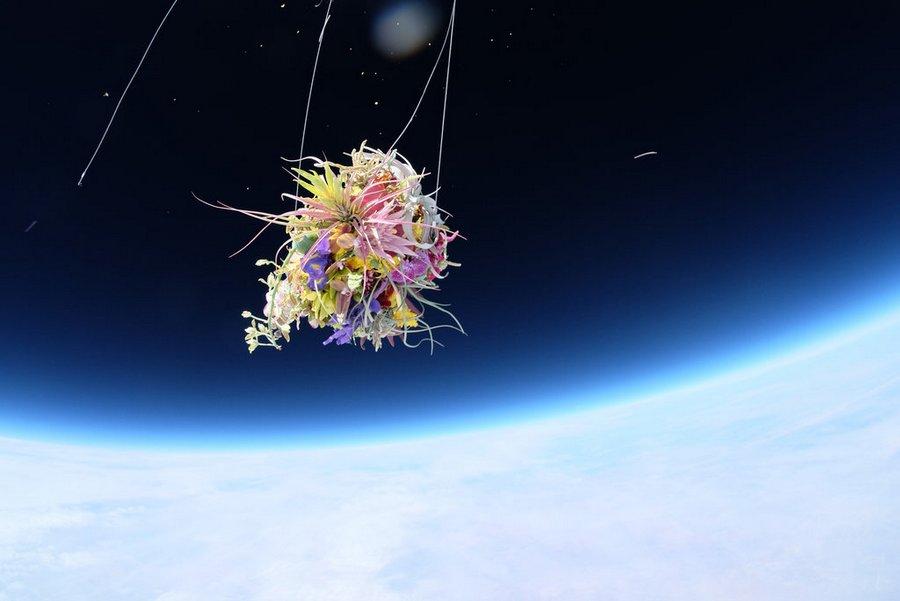 Makoto Azuma alternopolis EXOBIOTANICA-BOTANICAL-SPACE-FLIGHT (6)