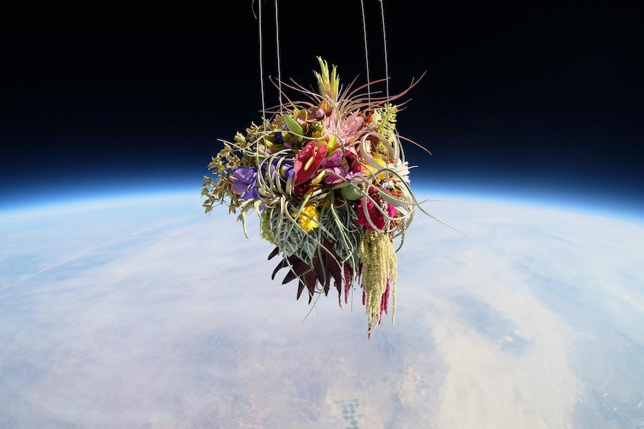 Makoto Azuma alternopolis EXOBIOTANICA-BOTANICAL-SPACE-FLIGHT (7)
