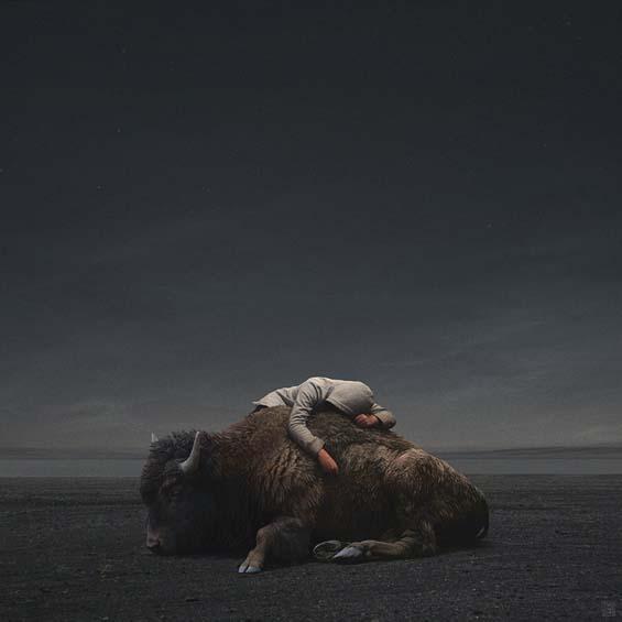 yuri-shwedoff-buffalo-recovered-internet