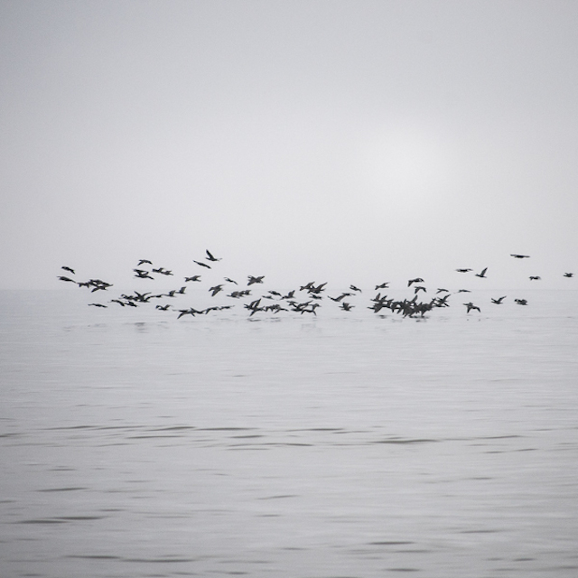 Baltic-Sea-Photography-1