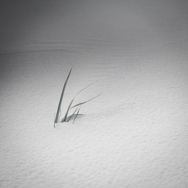 Baltic-Sea-Photography-5