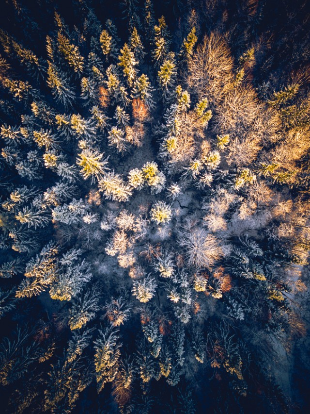 Fascinating-Aerial-Nature-Photography-by-Tobias-Hagg-4
