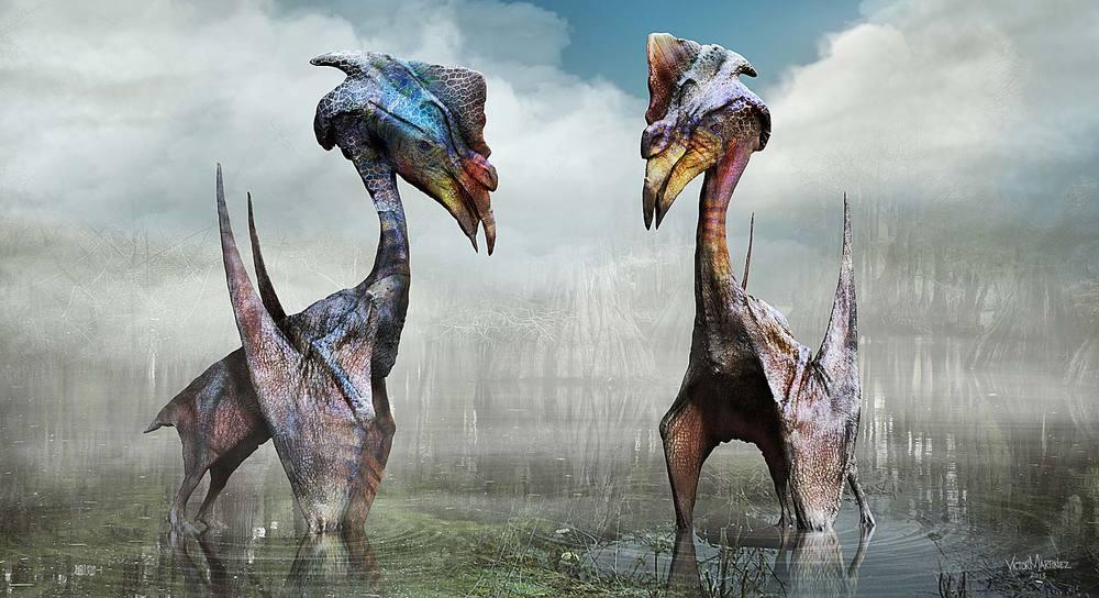 adultpterosaur05