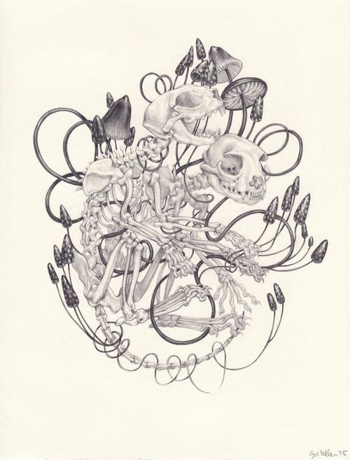 Zoe+Keller+Sphynx+Skeletons