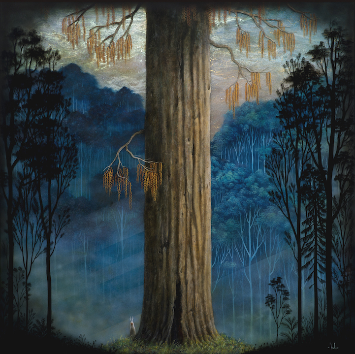 andykehoe20