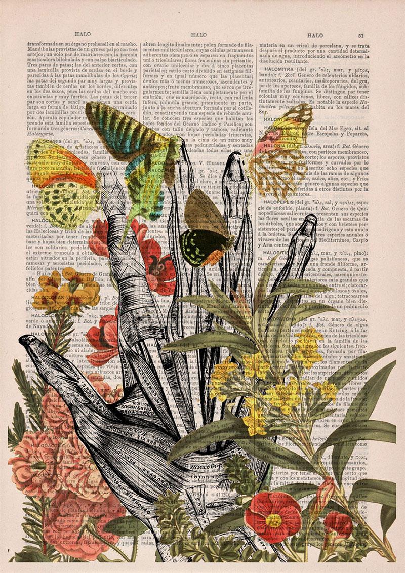 Anatomía del cuerpo fusionada con flores | Alternopolis