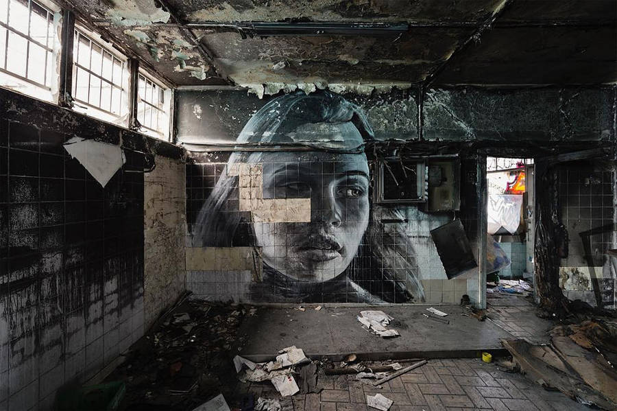 nature-of-beauty-street-art-by-rone-2-900x599