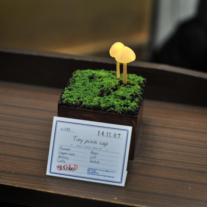 mushroom-5