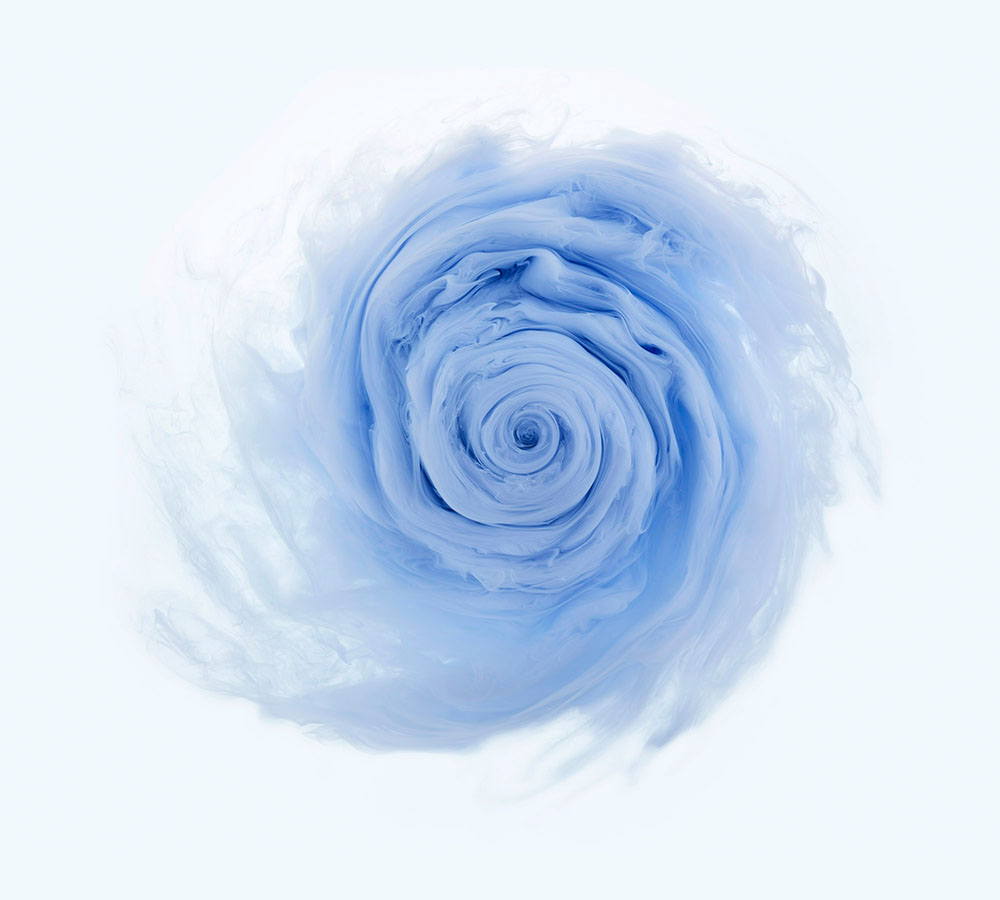 Aqueous Roses series by London photographer, Mark Mawson